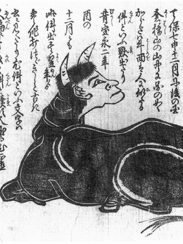Kudan versus Hakutaku