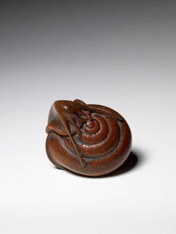 Tadayoshi – Snail