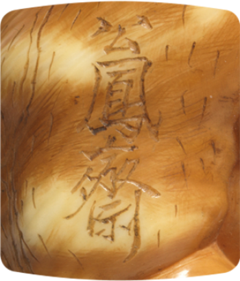 Signature Kohosai